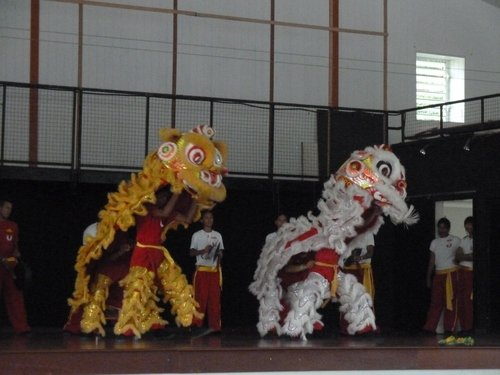Danse-dragon-3