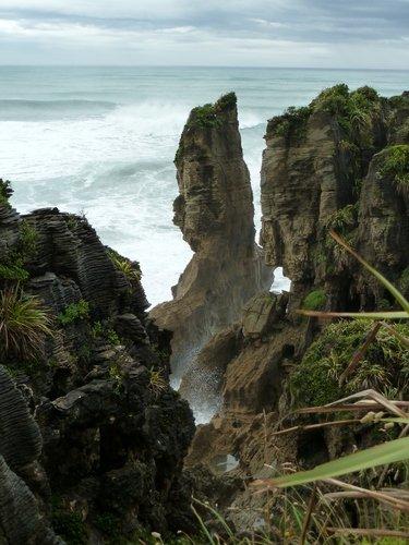 Vacances en Nouvelle Zélande : curiosités dans Vacances en Nouvelle Zélande déc.2011-janv.2012 Pancakes1