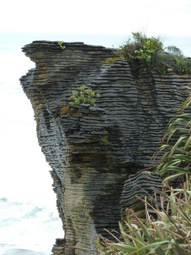 Pancakes5 Nouvelle Zélande ; Baldwin ; Moeraki boulders ; Pancakes Rocks ; Blue Pool dans Vacances en Nouvelle Zélande déc.2011-janv.2012