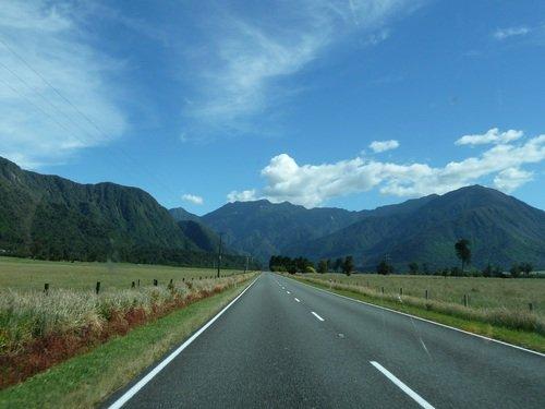 Vacances en Nouvelle-Zélande : paysages dans Vacances en Nouvelle Zélande déc.2011-janv.2012 bord-de-route1