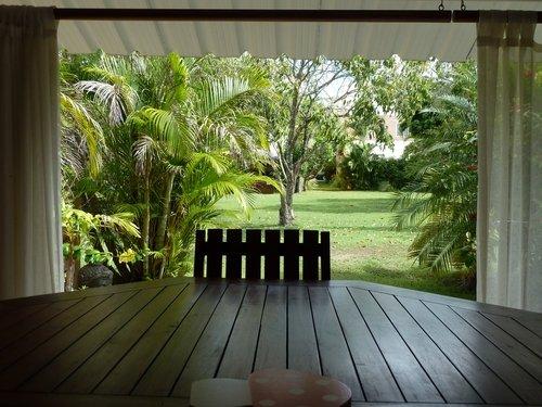 De retour à l'Ile Momo! dans La vie à Maurice jardin-terrasse