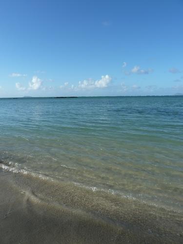 Gd-Gaube2 détritus dans La plage du jour
